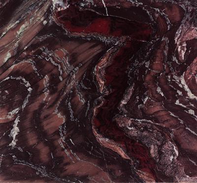 Sequoia Petrified Redwood Image